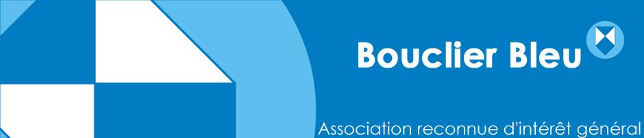 banner-site bouclier bleu
