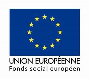 logo_drapeau_fse